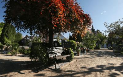 Begraafplaats St. Barbara viert honderdjarig bestaan